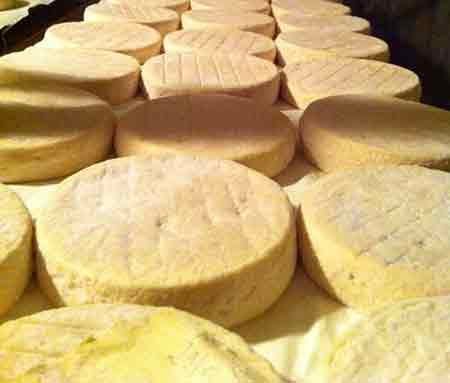 munster cheese in alsace france