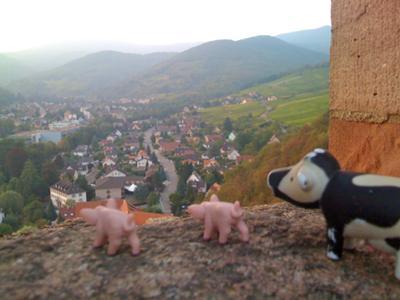 Kaysersburg in Alsace