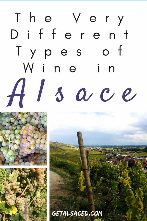 There are so many different types of white wine in Alsace France. Discover Alsace wine on the Alsace wine route! #alsace wine #alsace wine route #alsace france