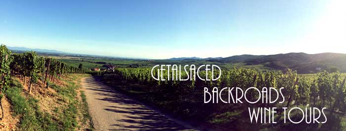 an alsace backroad in the vineyards