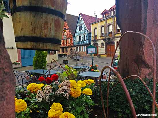 village flowers and houses in Kientzheim in Alsace France