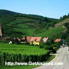 A road leading up to the tiny village of Niedermorschwihr on the wine road in Alsace