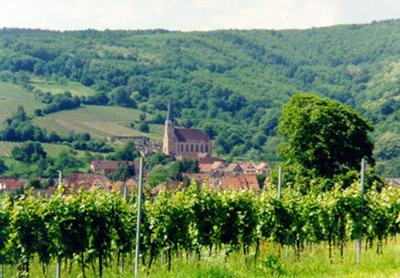 Andlau from Grand Cru Wiebelsberg