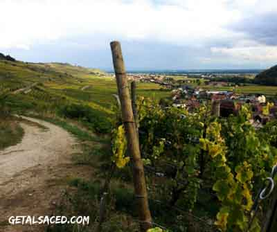 The beautiful wine region of Alsace France