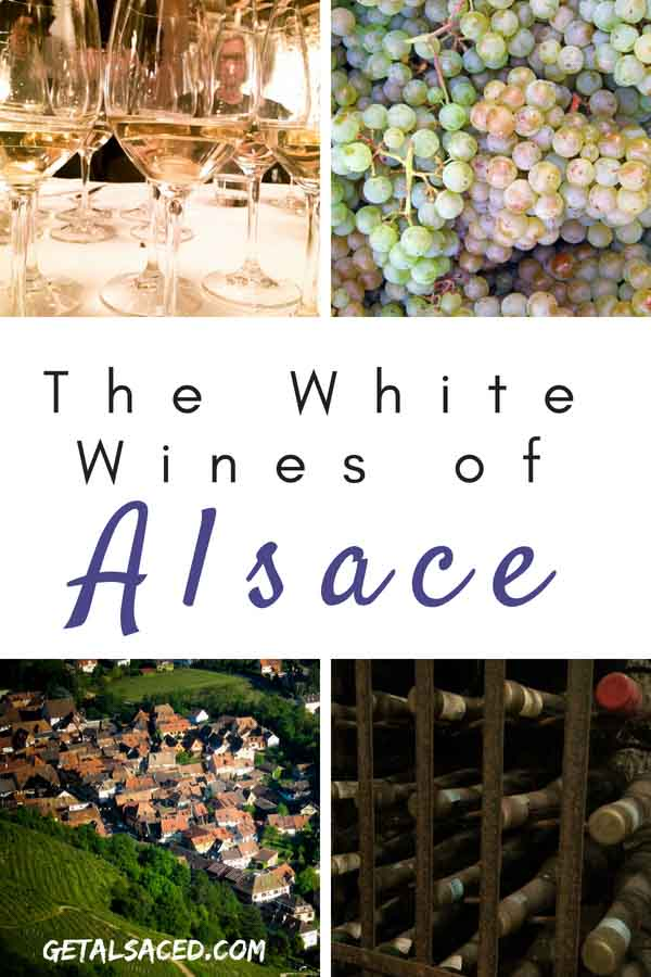 Alsace is beautiful wine region in France with some amazing white wines that you can put in your cellar for a long time.  #alsace #france #wine #grapes #wine tasting #winery #vineyard #travel