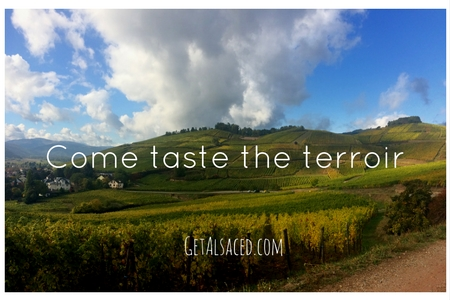 Come taste the terroir with GetAlsaced