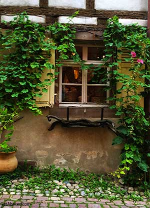 village house in Alsace France